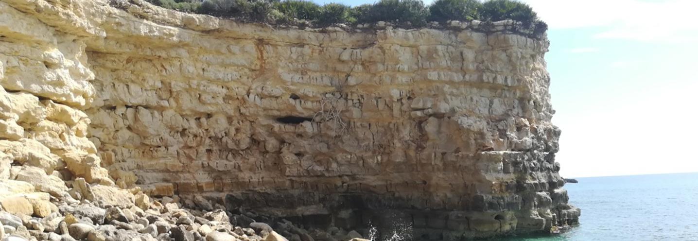 AVOLA – Gallina nord – Promontorio di NE, ben stratificato