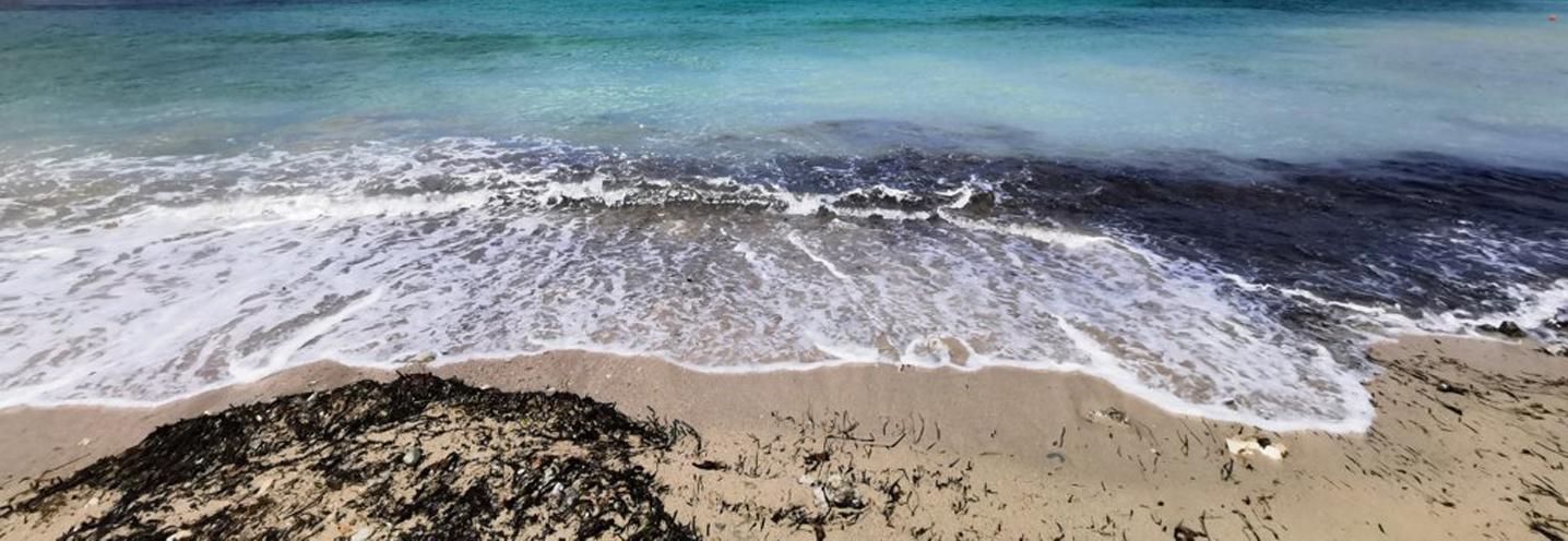 MELLIEHA – ARMIER BAY -LITTLE ARMIER BEACH – Frangimento sulla battigia e acque cristalline della baia