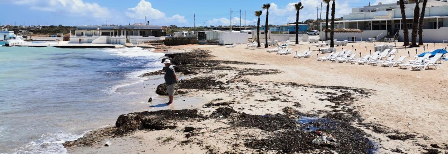 MELLIEHA – ARMIER BAY -LITTLE ARMIER BEACH – Spiaggia