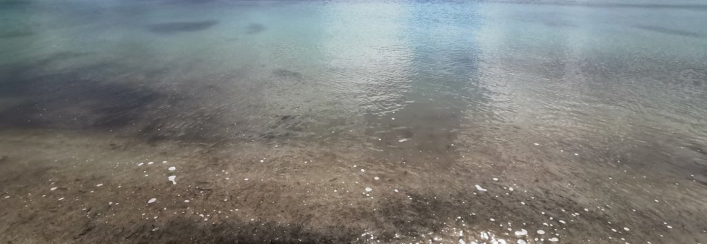 MELLIEHA – MELLIEHA BAY – La battigia e la trasparenza dell'acqua