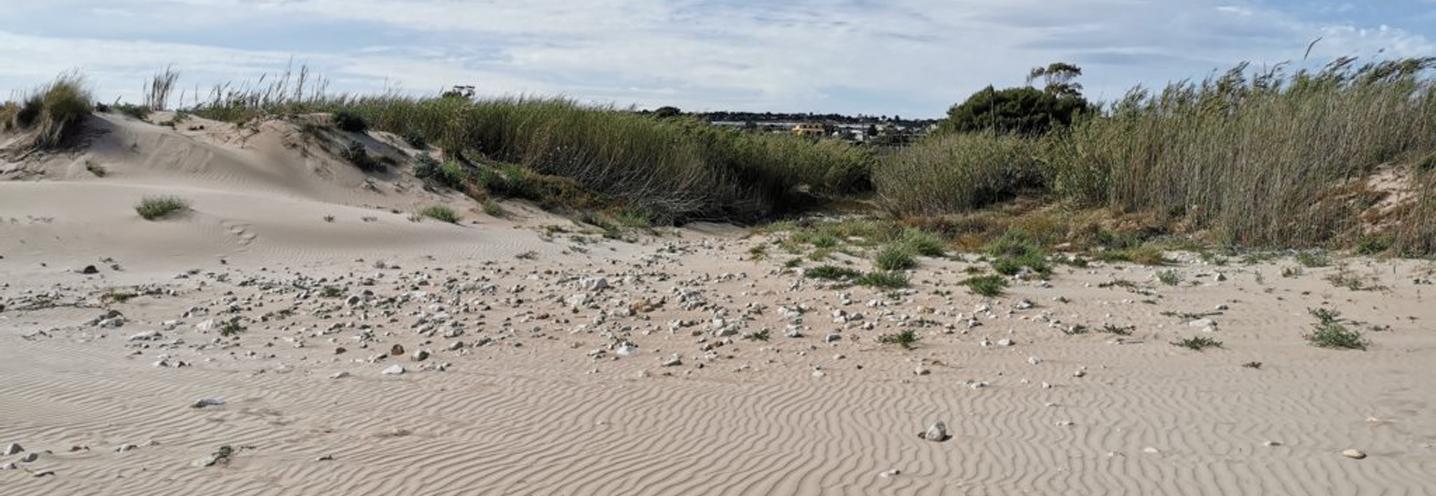 SCICLI – Sampieri Costa di Carro – Le dune