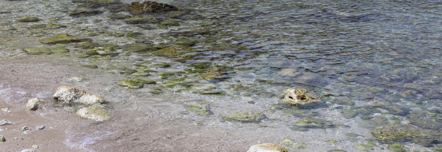 SIRACUSA – Panagia – Particolare della limpidezza delle acque