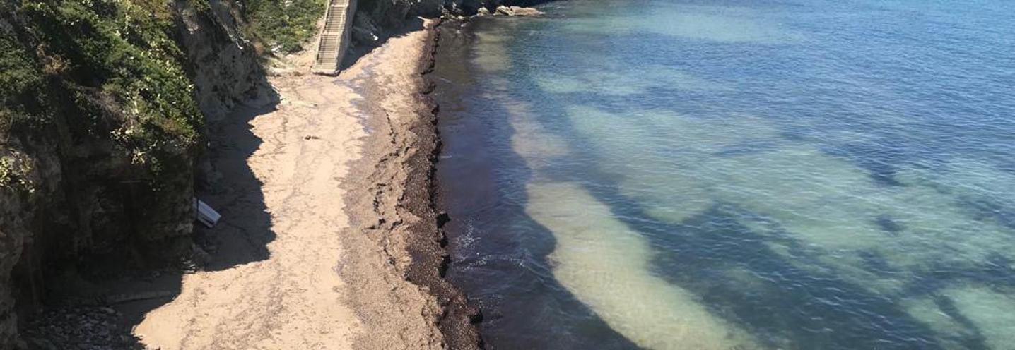 TERRASINI – ovest porto – Settore meridionale della pocket beach
