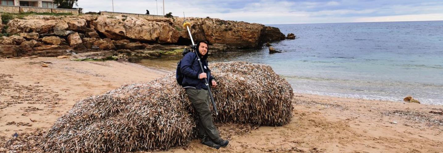 VALDERICE – Cortigliolo – Piccosa sosta su un deposito di Posidonia Oceanica spiaggiata