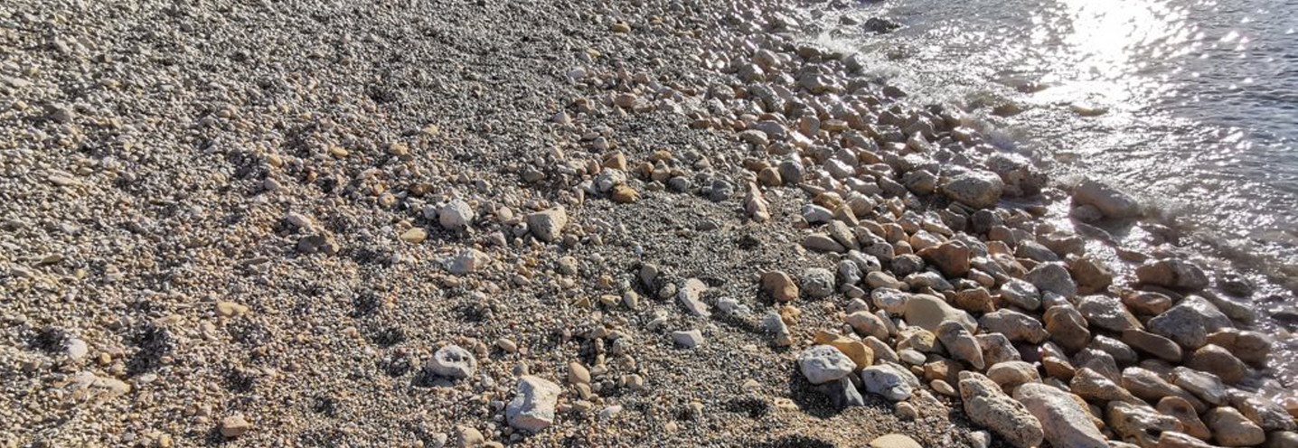 ZEBBUG (GHAWDEX – XWEJNI BAY – Dettaglio di spiaggia e battigia